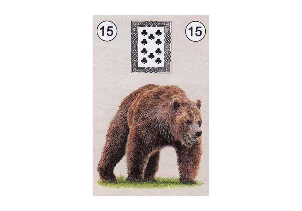 Tajne tarota Lenormand: Medvjed